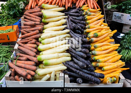 Fresh carrot varieties on sale at a market stall, London, England, United Kingdom, Europe - Stock Image