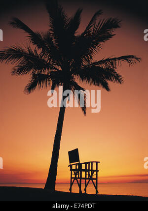 Deck chair under coconut palm in sunset - Stock Image