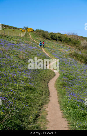 Two female hikers walking on the South West Coast Path near Boscastle in Cornwall, England, UK - Stock Image