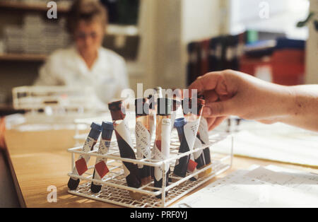 Vials of blood samples gathered at a lab in Sweden for testing - Stock Image