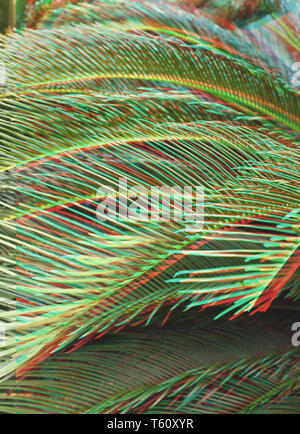 background of palm branches closeup. toning.  glitch effect - Stock Image