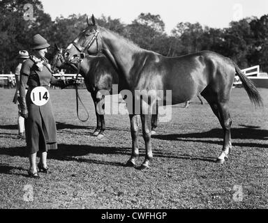 A female judge appraises a horse at a horse show at Tuxedo Park, New York, ca 1938 - Stock Image