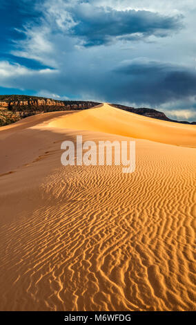 Wind ripples at dunes, sunset, Coral Pink Sand Dunes State Park, Utah, USA - Stock Image
