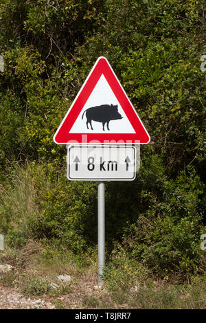 Kroatien, Dalmatien, Cavtat - Stock Image