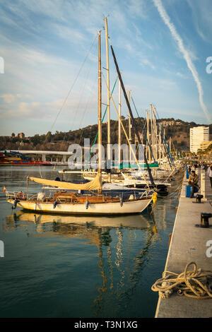 Muelle Uno. Malaga, Costa del Sol, Malaga Province, Andalusia, southern Spain. - Stock Image