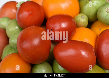 Home grown red yellow and green tomatoes - Stock Image