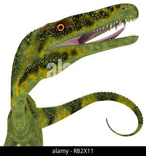 Juravenator Dinosaur Head - Juravenator was a carnivorous theropod dinosaur that lived in Germany during the Jurassic Period. - Stock Image