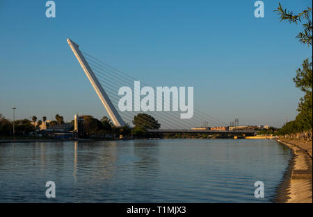 The Alamillo Bridge connects northern Seville with La Cartuja across the Canal de Alfonso XIII - Stock Image