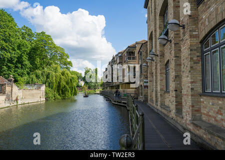 River Cam from Quay Side Cambridge 2019 - Stock Image
