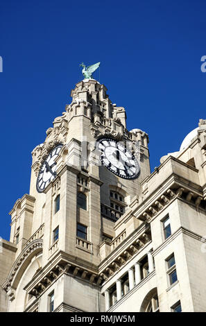 Liverpool Coat of Arms - Stock Image