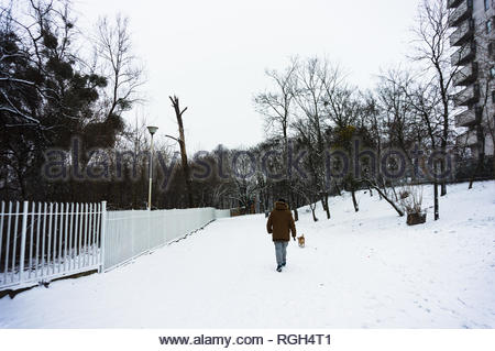 Poznan, Poland - January 26, 2019: Man and dog walking on a footpath with snow at a park on a cold winter day. - Stock Image