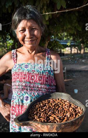 Piaraçu village (Aldeia Piaraçu), Mato Grosso State, Brazil. Kena Metuktire with cumaru (Dipterix odorata, Tonka beans) kernels in a cuia gourd bowl. - Stock Image