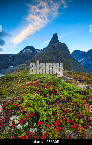 Beautiful autumn morning at Litlefjellet in Romsdalen, Norway. The peak Romsdalshorn, 1550 m, is in the background. - Stock Image