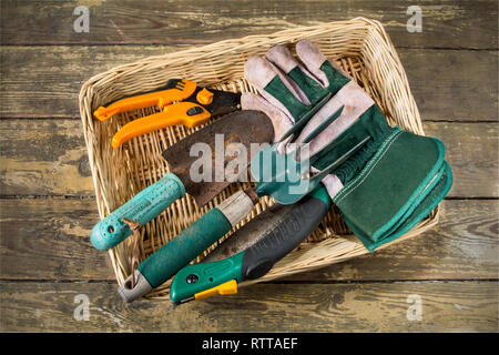 A basket of well used usual gardening hand tools - Stock Image