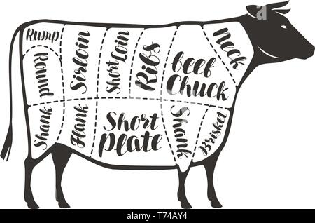 Cuts of beef, cow or bull. Butcher shop, meat vector illustration - Stock Image