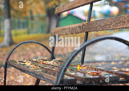 Autumn rain in the park during the day - Stock Image