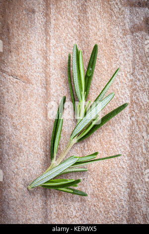 Close up branch of fresh rosemary  for seasoning concept on rustic old wooden background. - Stock Image