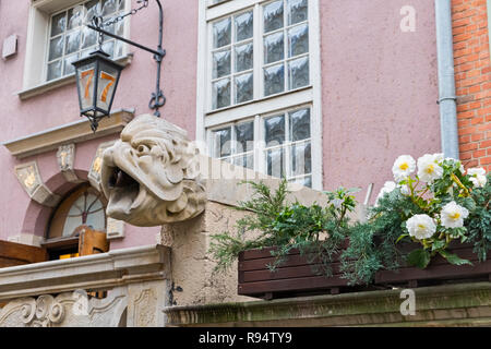 Carved water spout Mariacka Street Gdańsk Poland - Stock Image