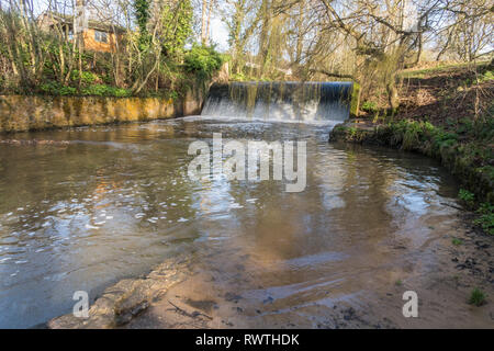 The weir on the river Sid at Sidmouth, Devon, with willow trees just starting to colour up. - Stock Image