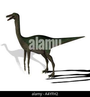 The Gallimimus seemed also chickens to imitators mentioned with a length from more than 6 meters it in the Cretaceous - Stock Image