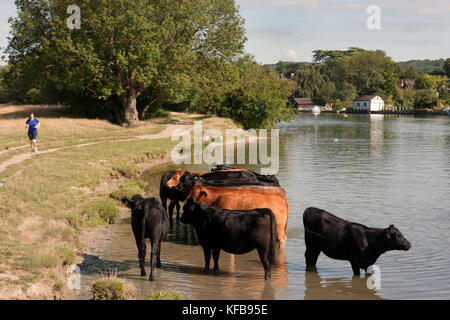 Cookham and the River Thames near High Wycombe, Buckinghamshire, England - Stock Image