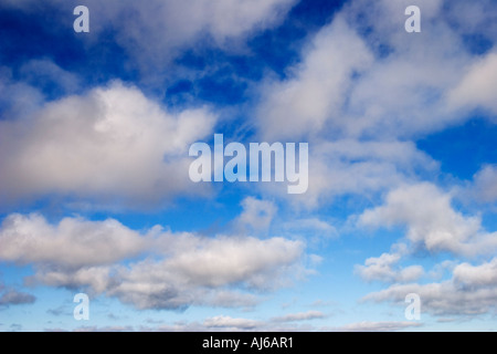 Cumulus clouds against a blue sky - Stock Image