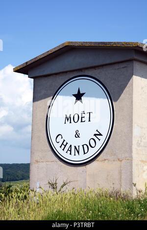 Moët & Chandon Champagne vineyard, Reims mountain regional natural park, Marne, Champagne-Ardennes, France - Stock Image