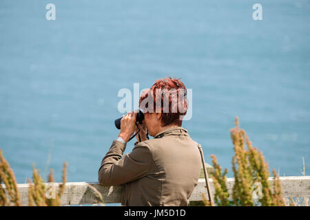 A woman female bird watching with binoculars at a viewpoint on Bempton Cliffs RSPB Reserve, UK. - Stock Image