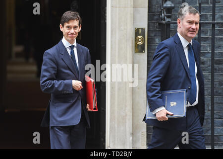 Secretary of State for International Development Rory Stewart (left) and Justice Secretary David Gauke leave after a cabinet meeting at 10 Downing Street, London. - Stock Image