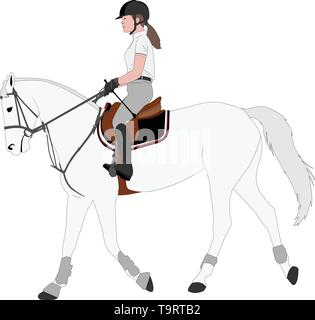 detailed color illustration of young female riding elegant horse - vector - Stock Image