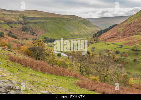 Yorkshire  Dales National Park autumn landscape, the River Swale between Keld and Muker, on the Coast to Coast long distance footpath, Swaledale, UK - Stock Image