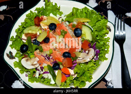 Barbecued salmon salad with blueberries, green beans, carrots mushrooms, cucumber, tomatoes, lettuce, red cabbage - Stock Image