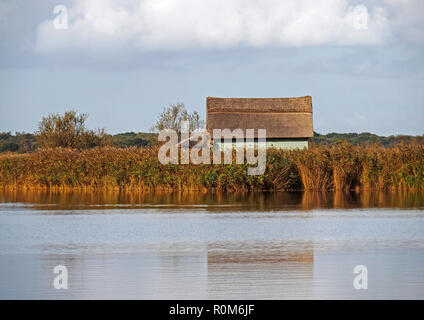 A typical Broadland wooden boathouse with thatched roof in the marshy reed beds at Horsey Mere, one of the famed Norfolk Broads seen in autumn sunshin. - Stock Image