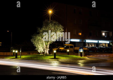 Roundabout at night with illuminated beautiful tree in the middle - Stock Image