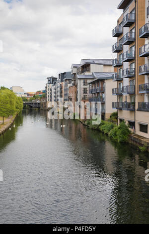 River Wensum apartments, Norwich, UK - Stock Image