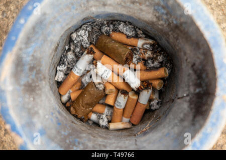 A collection of cigarette ends in a blue bowl - Stock Image