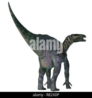 Iguanodon Dinosaur Tail - Iguanodon was a herbivorous ornithopod dinosaur that lived in Europe during the Cretaceous Period. - Stock Image