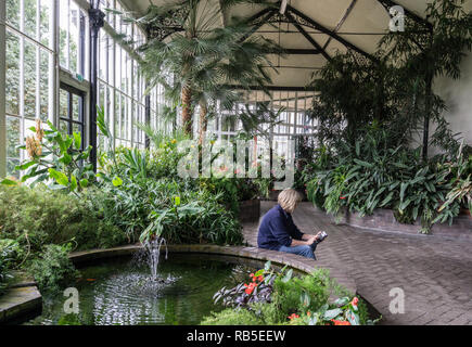 Seated woman checking her mobile phone amongst the greenery of the Pavilion Gardens' conservatory, Buxton, Derbyshire, UK - Stock Image