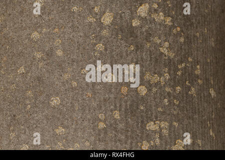 Exterior wall texture with stains - Stock Image
