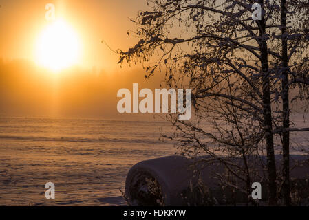Cold winter sunrise in Finnish countryside - Stock Image