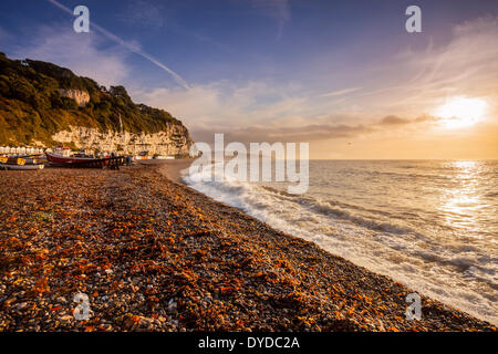 A view along the coastline at Beer in Devon. - Stock Image