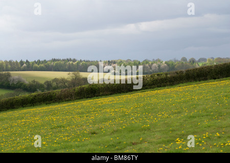 A View Across the Chess Valley in Spring (April), Sarratt Bottom, Hertfordshire, UK - Stock Image