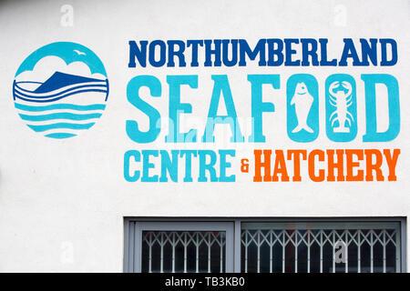 A fish hatchery in Amble, Northumberland, UK. - Stock Image