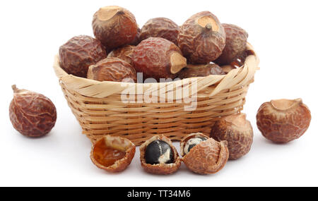 Sapindus mukorossi or Indian soapberry use in many pharmacological and cleansing purposes - Stock Image