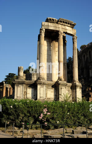 italy, rome, roman forum, temple of vesta - Stock Image