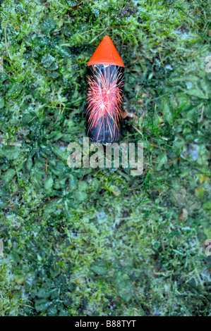 rocket firework lawn grass winter cold after the party new years day germany deutschland - Stock Image