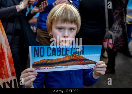 A young boy takes part in a demonstration against a cable car project proposed by the Mount Wellington Cableway Company for Mt Wellington in South Hobart, Tasmania August 4, 2018. - Stock Image