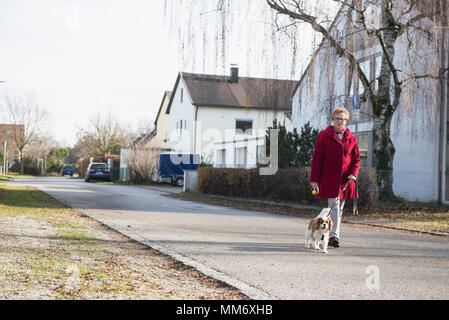 Old woman walking with pet dog on street - Stock Image