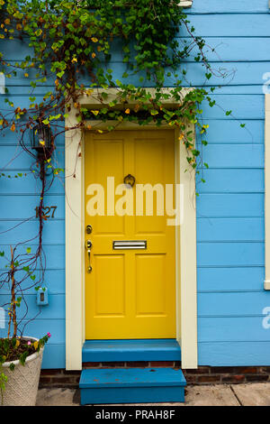 USA Maryland Baltimore Fells Point MD colorful front door to an old rowhouse - Stock Image