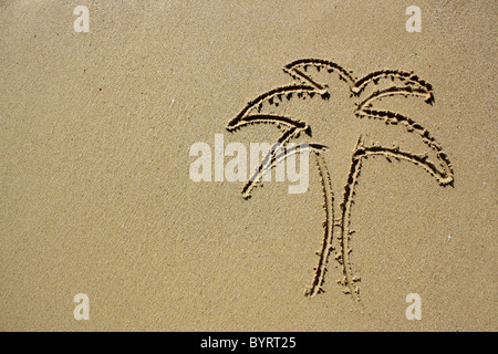 Drawing of a palm tree in wet sand. Please see my collection for more similar photos. - Stock Image